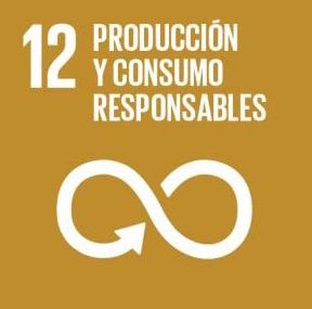 12 Produccion y consumo responsables